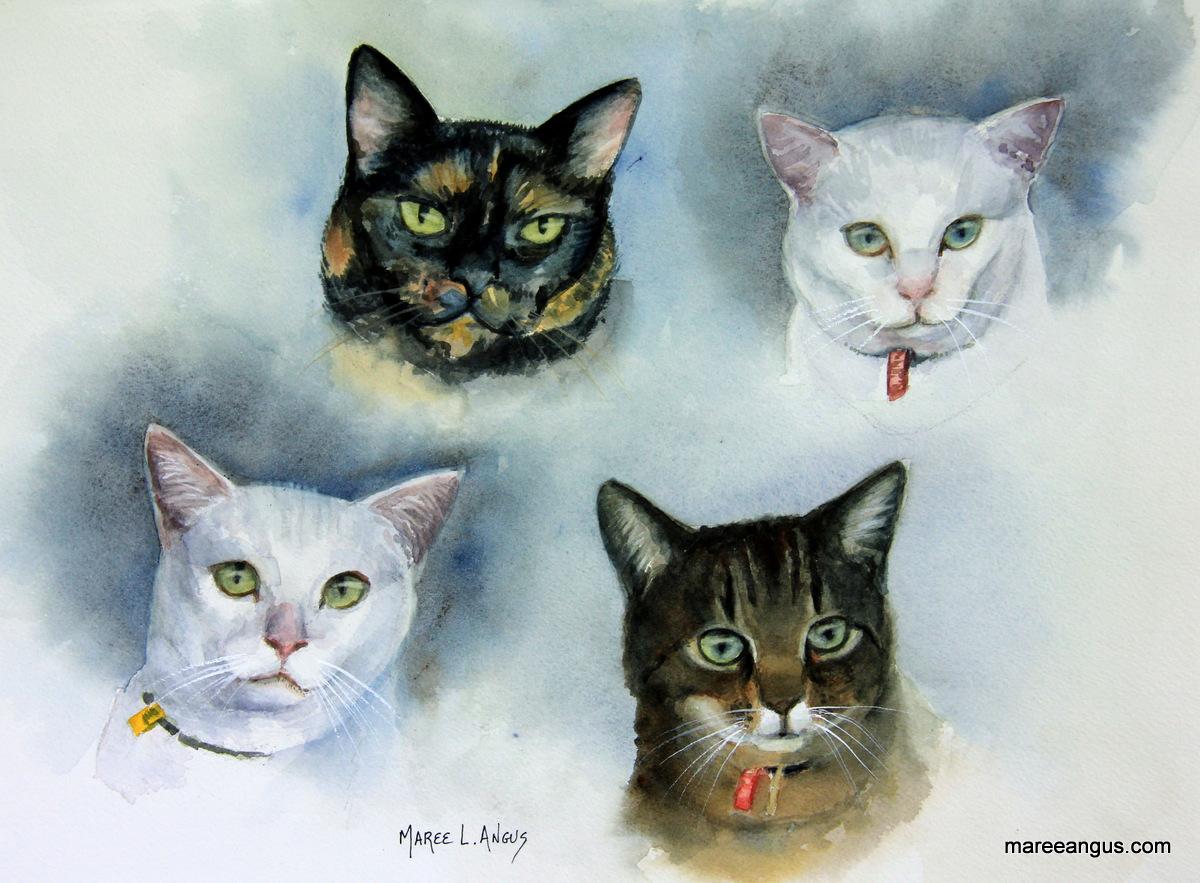 Gurujivan's Cats - 27cm x 37cm, Watercolour - Commission