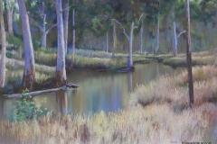 Billabong, Undercliffe -45cm x 65cm, Pastel - SOLD