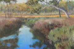 Shadows at the Waterhole - 32cm x 22cm, Pastel - $580