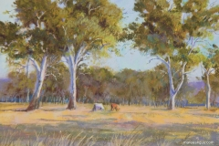 In Golden Light - 22cm x 32cm, Pastel - $580
