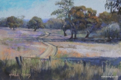 Southern Pastures - 22cm x 32cm, Pastel - SOLD