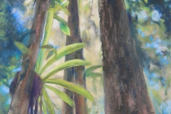 Rainforest Canopy - 65cm x 45cm, Mixed Media - $1750 (framed)