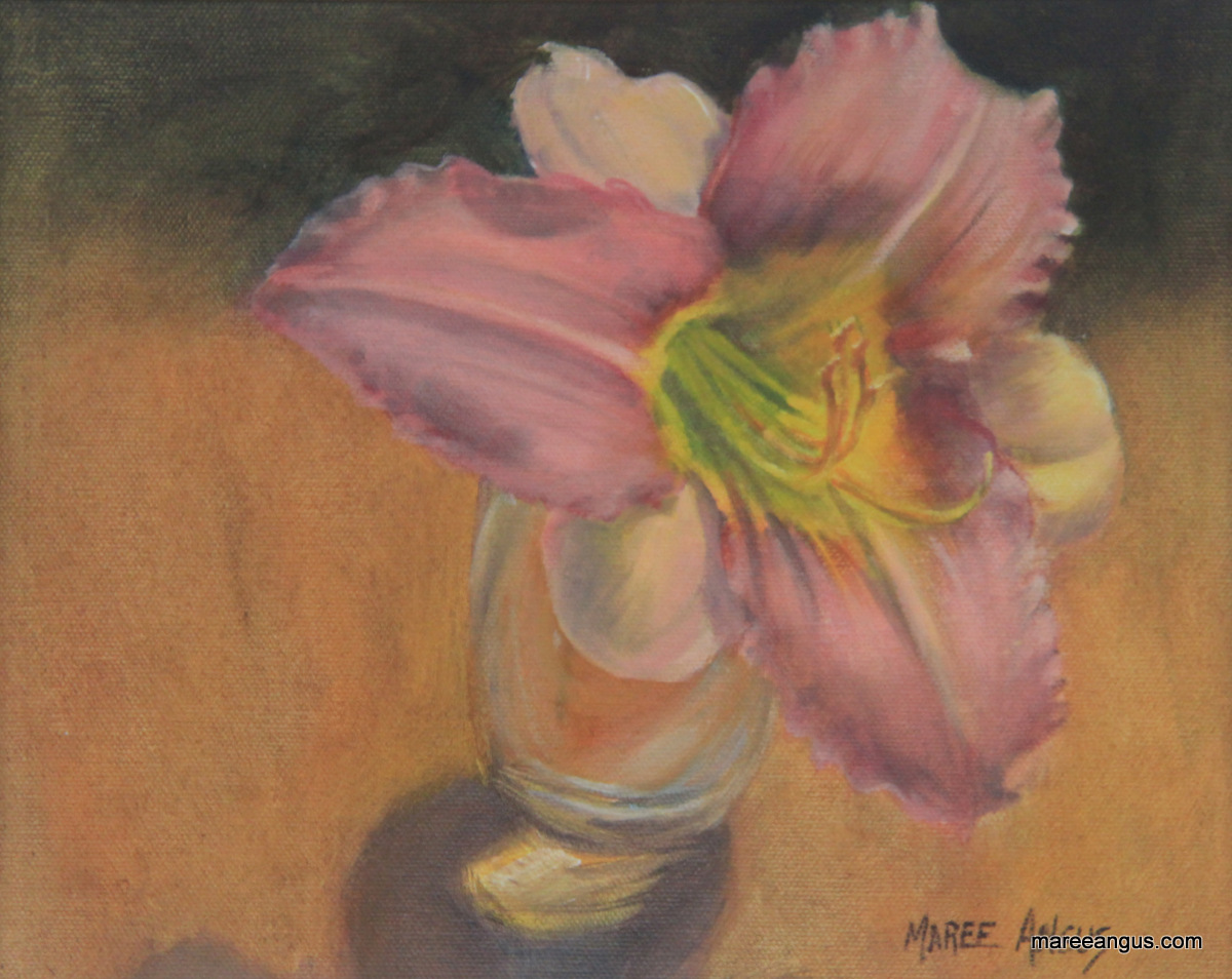 Day-Lily-Oil